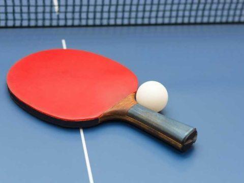 Pasol 7 Star Premium Ping Pong Paddle